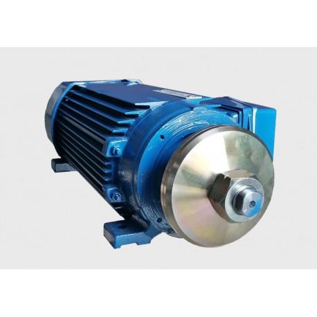 Silnik pił tarczowych 5,2 kW 400v SPg75-2E jamnik