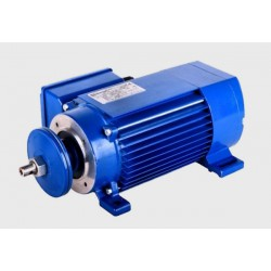 Silnik jamnik 230V 2,2 kW MYC 63 2-2