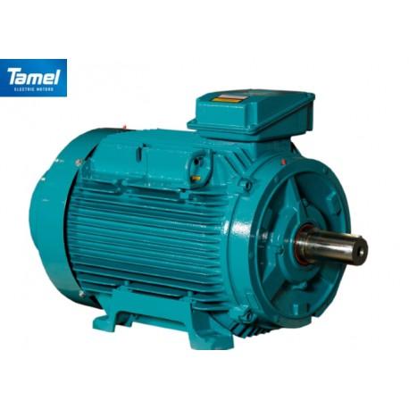 Silnik elektryczny 1400 30 kW 4Sg 200L-4-IE2 B3